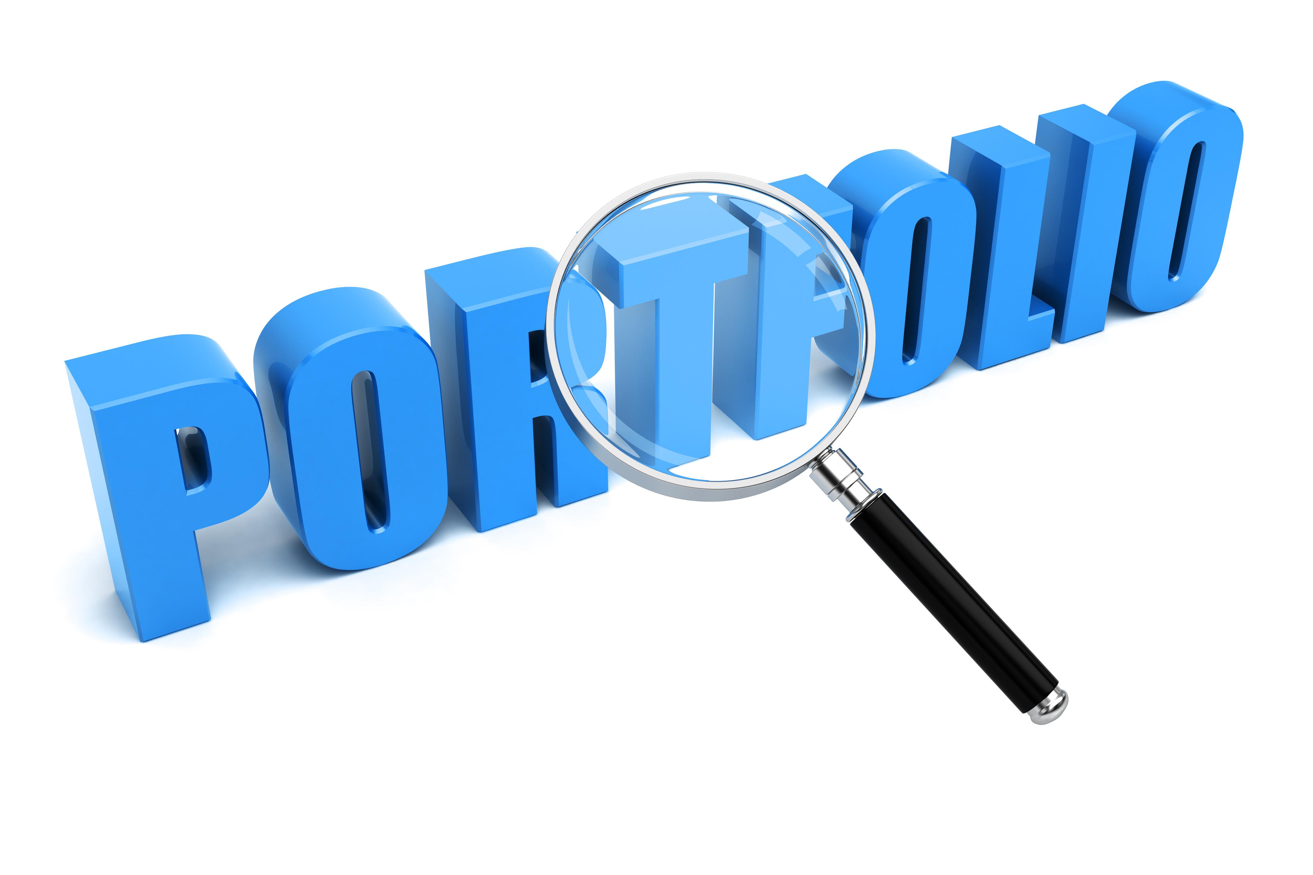 Portfolio search