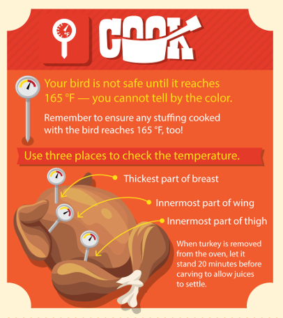 Turkey Thawing At Room Temperature